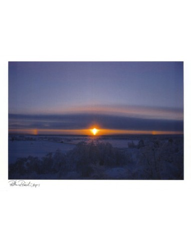 Ritva Reinilä, ARPS -valokuvapostikortti