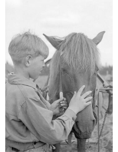 Erkki Kalliokoski ja kotitalon hevonen