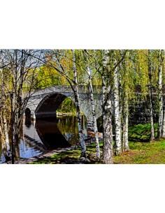 Mierolan silta, Hattula