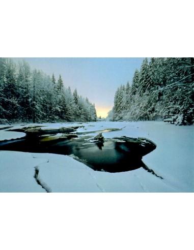 Pitkäkosken luonnonsuojelualue...