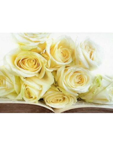 Kirja ja ruusut